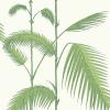 Papier peint Palm Cole and Son
