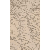 Papier peint Traveller Parchment Andrew Martin