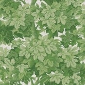 Papier peint Great Vine Leaf Green Cole and Son
