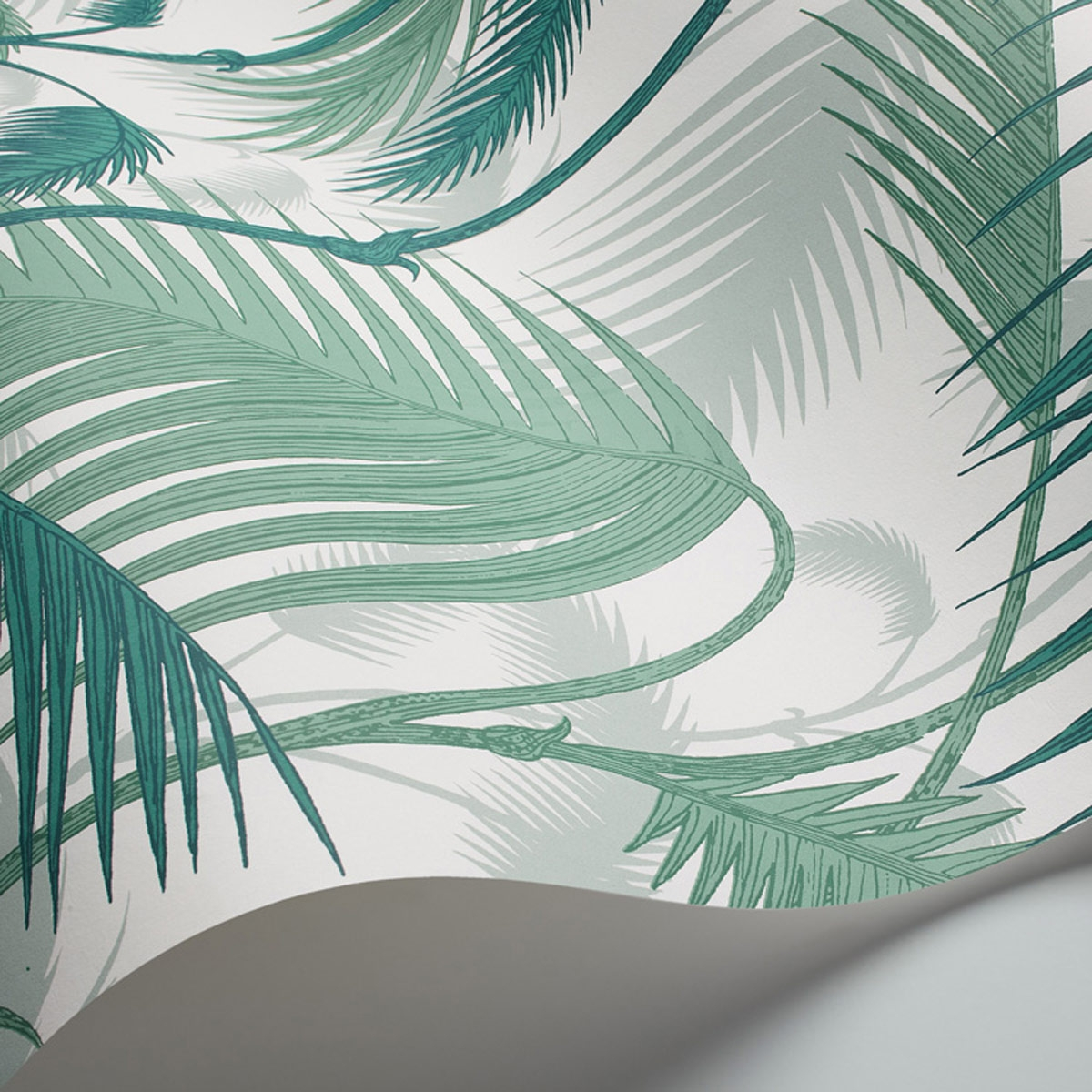 Papier Peint Palm Jungle Cole And Son
