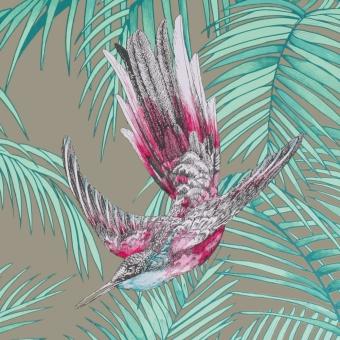 Papier peint Sunbird Amande Matthew Williamson