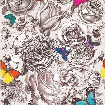 Papier peint Butterfly Garden Multicolore Osborne and Little