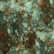 Tissu Oxydation Jade Jean Paul Gaultier