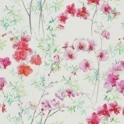 Tissu Corsage Schiaparelli Designers Guild